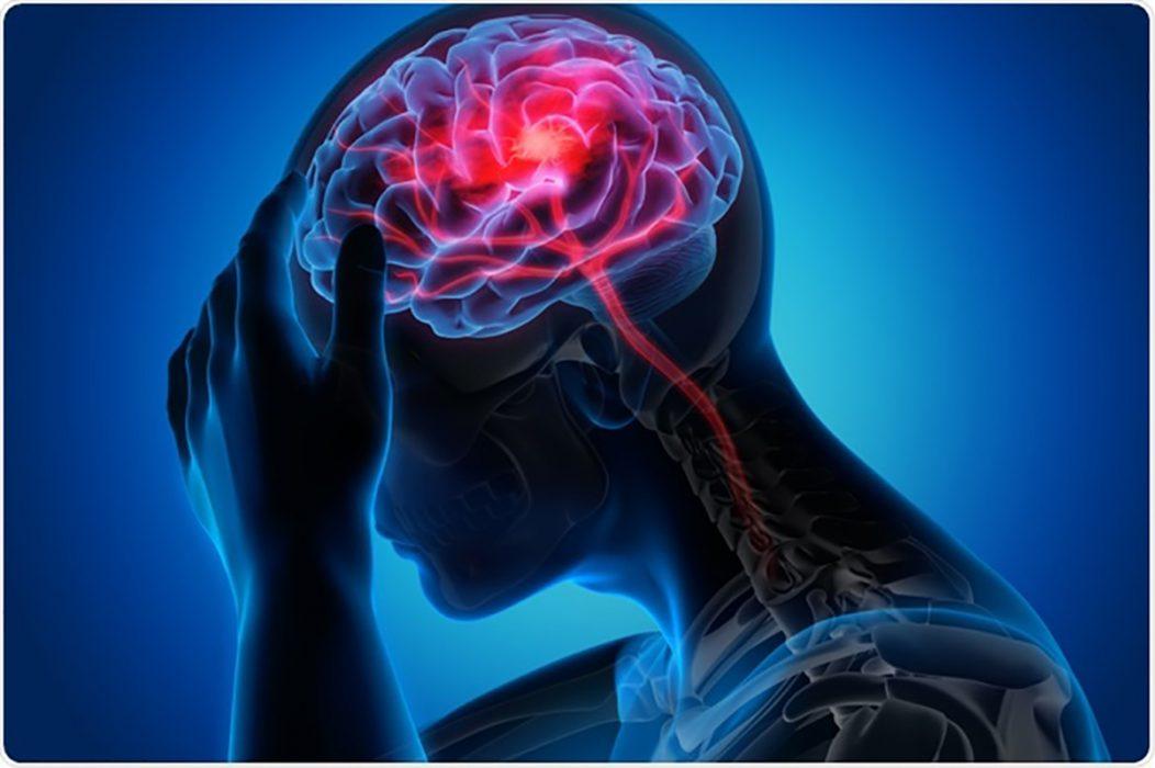 Não bộ sẽ chỉ huy tuyến thượng thận tiết ra hàng loạt hormone gia tăng sự căng thẳng như Cortisol, Adrenaline, Noradrenaline
